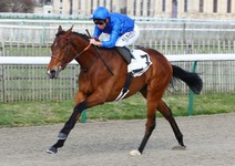 sélection premium 24e13 d7e69 Classic prospects to the fore at ParisLongchamp